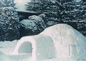 How to carve an igloo!